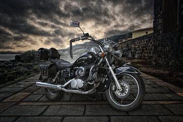 Honda Shadow van Tejo Coen