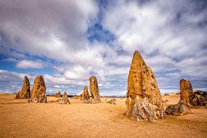 Nambung Nationaal Park, West Australie van Sander Sterk