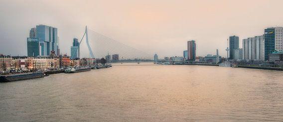 Rotterdam Skyline vanaf de Willemsbrug van Anouschka Hendriks