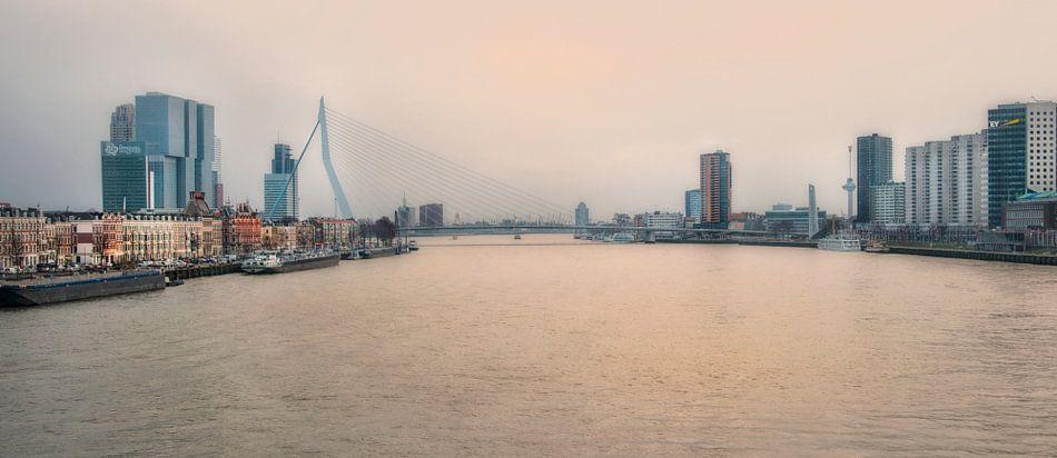 Rotterdam Skyline vanaf de Willemsbrug