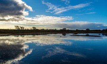 Reflexion des Himmels in einem gefrorenen Teich von Discover Dutch Nature