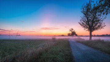 Sonnenaufgang in den Rieselfeldern von Steffen Peters