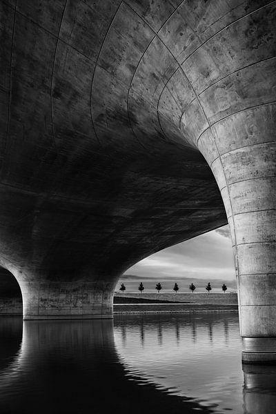 Waalbrug bij Spiegelwaal van Sander Grefte