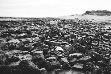 Stone Beach von Alexander Tromp
