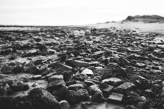Stone Beach van Alexander Tromp