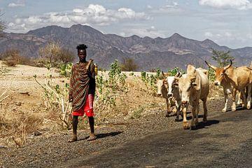 herder met koeien van rene schuiling