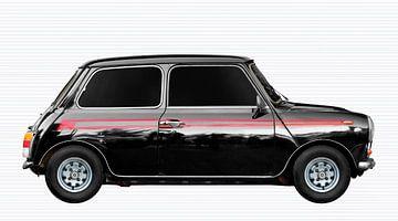 Mini 1000 Super van aRi F. Huber