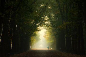 Läufer am frühen Morgen. von
