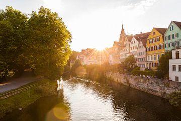 Neckarfront mit dem Hölderlinturm in Tübingen von Werner Dieterich