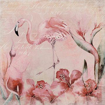 Flamingo von Andrea Haase