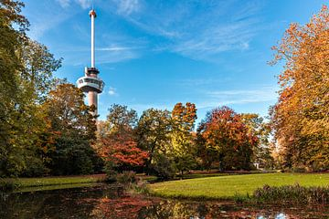 Herbst im Euromastpark von Midi010 Fotografie