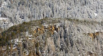Besneeuwde bergwand van Wouter van Woensel