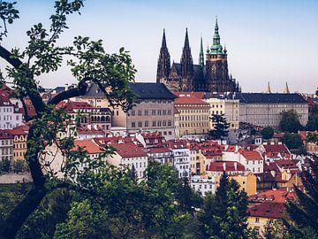 Prager Burg / Veitsdom von Alexander Voss