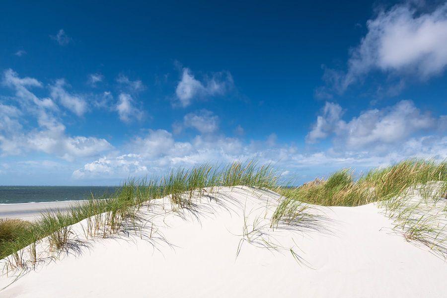 Verlangen naar strand en zee