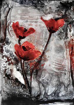 Mohnblumen - Mohnart-rot von Christine Nöhmeier
