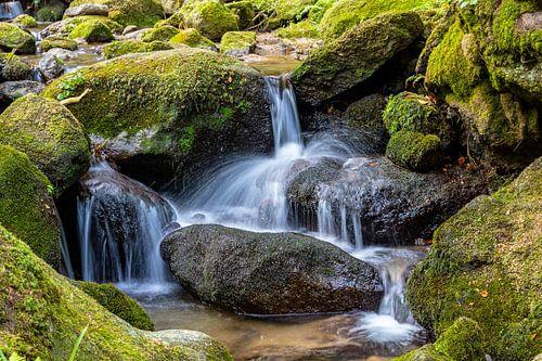 Schwarzwald-Wasser von