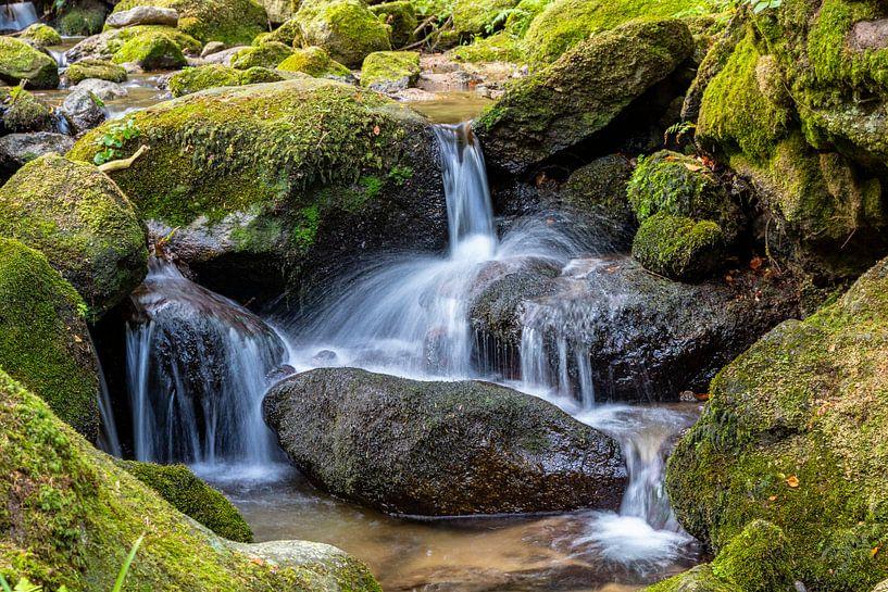Waterfall - Black Forest van Ursula Di Chito