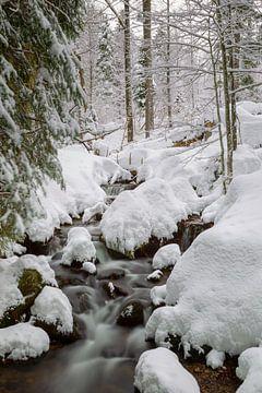 Beek in de winter van Dirk Rüter