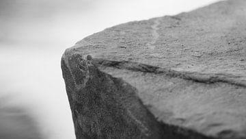 steen. van Diederick Luijendijk