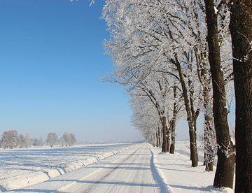 Winter-Gasse von Wilma Overwijn