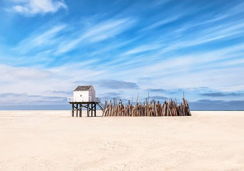 Castle in the sand van