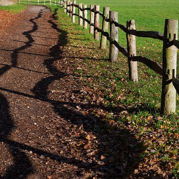 vrolijke schaduwdans  van rustiek hekwerk op wandelpad van Georges Hoeberechts