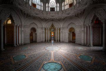Perfecte symmetrie von Steve Mestdagh