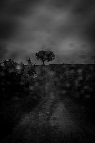 Landweg in de storm