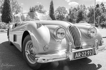 klassieke oude auto von eric brouwer