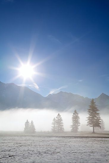 Winter purity