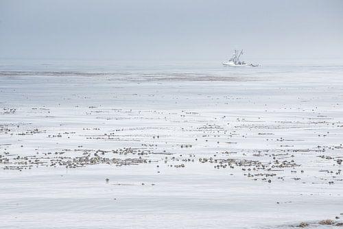Boot op (de) Stille Oceaan