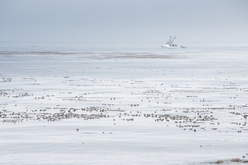 Boot op (de) Stille Oceaan van Bas Wolfs