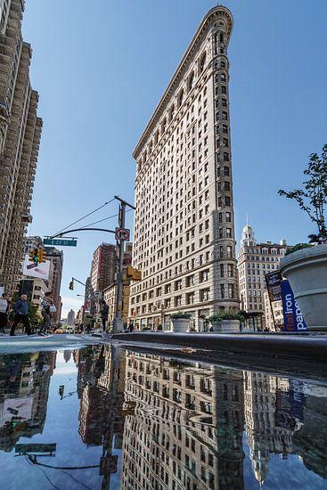 New York    Flatiron