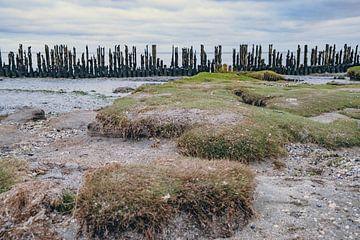 La mer des Wadden - 4 sur Rob van der Pijll