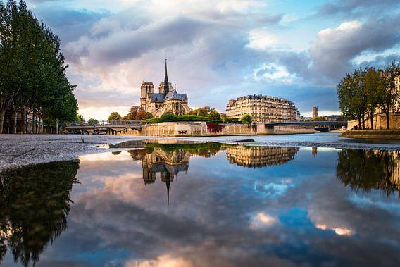 Reflections of the Notre Dame de Paris 2