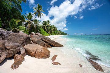 Tropischer Strand auf den Seychellen von Krijn van der Giessen