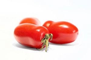 reife Roma-Tomaten mit weißem Hintergrund von Heiko Kueverling