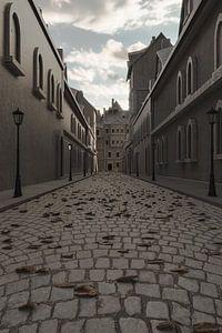 Gezicht op de oude stad met geplaveide straat van Besa Art