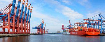 Containerschepen met containers die bij de containerterminal in de haven van Hamburg van