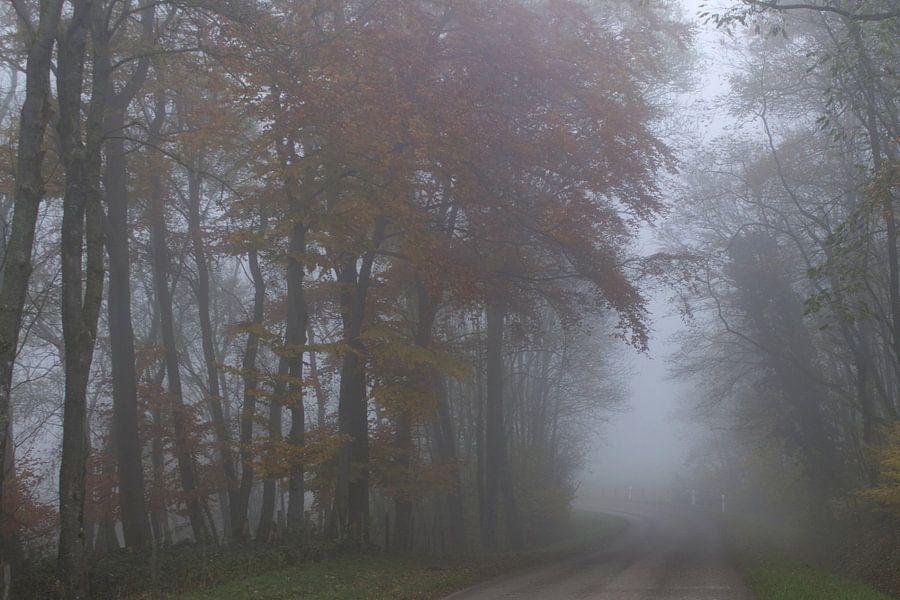 Mist van marleen brauers