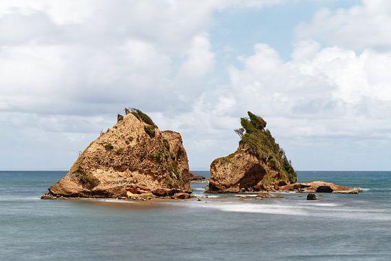 Felsen an der Küste von Dominica