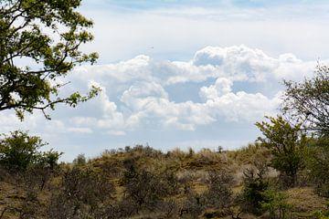wolken van Tania Perneel