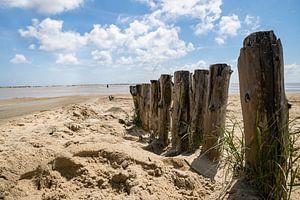 Der Weg zum Strand von Sonja Tessen