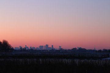 Skyline van Rotterdam van Ewan Mol