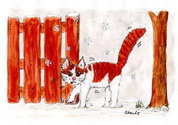 Kater Möhrchen im Winter von Sandra Steinke