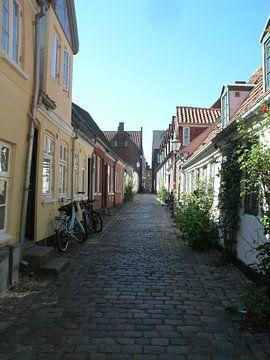 straatje in pittoresk Ribe Denemarken van tiny brok