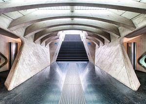 Station Luik-Guillemins van David Pronk
