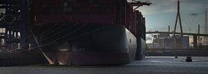 Afgemeerde containerschepen bij een terminal in Hamburg