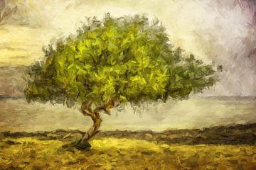 Bäume zum Träumen van Marion Tenbergen