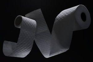 papier toilette, papier toilette , sur Jan Fotografie